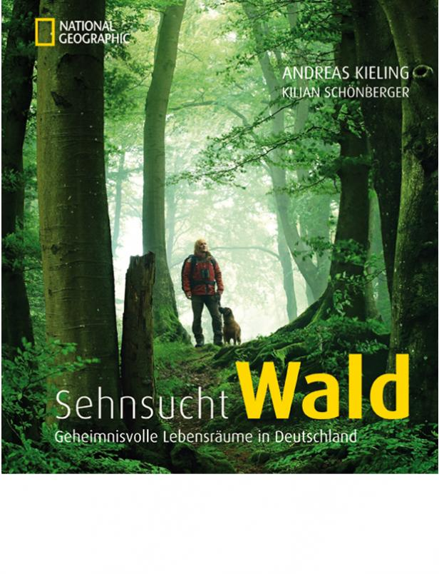 National Geographic Sehnsucht Wald Andreas Kieling Kilian Schönberger