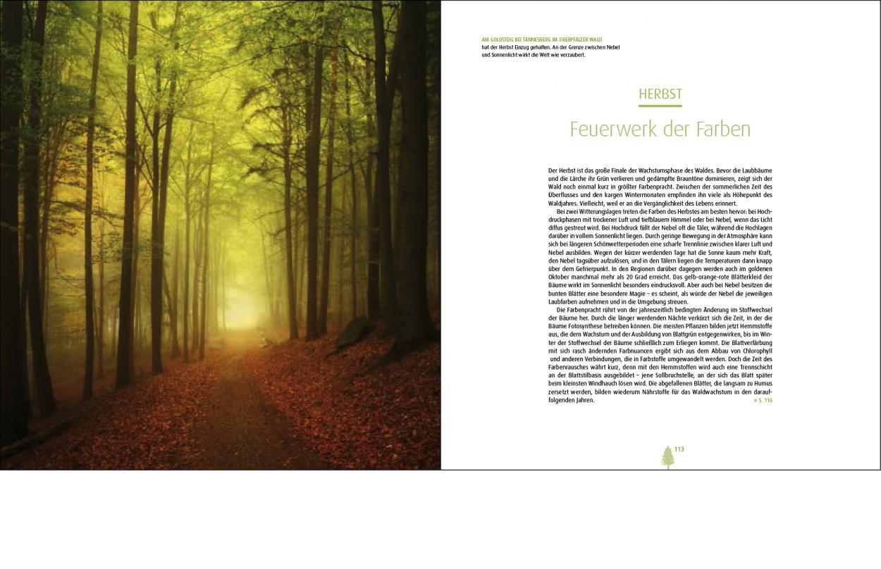 National Geographic Sehnsucht Wald Andreas Kieling Kilian Schönberger