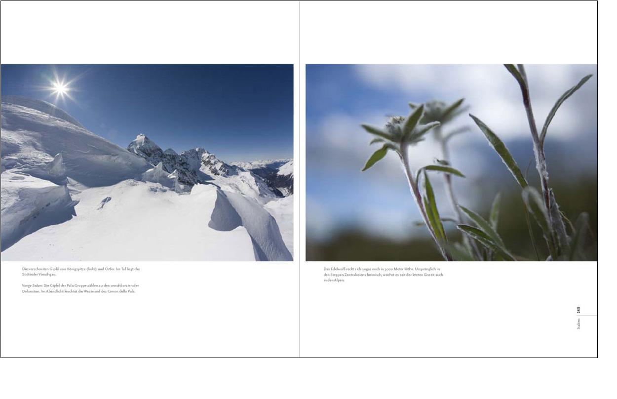 Erdgeschoss Grafik | Esther Gonstalla | Book Design | Wild Alps