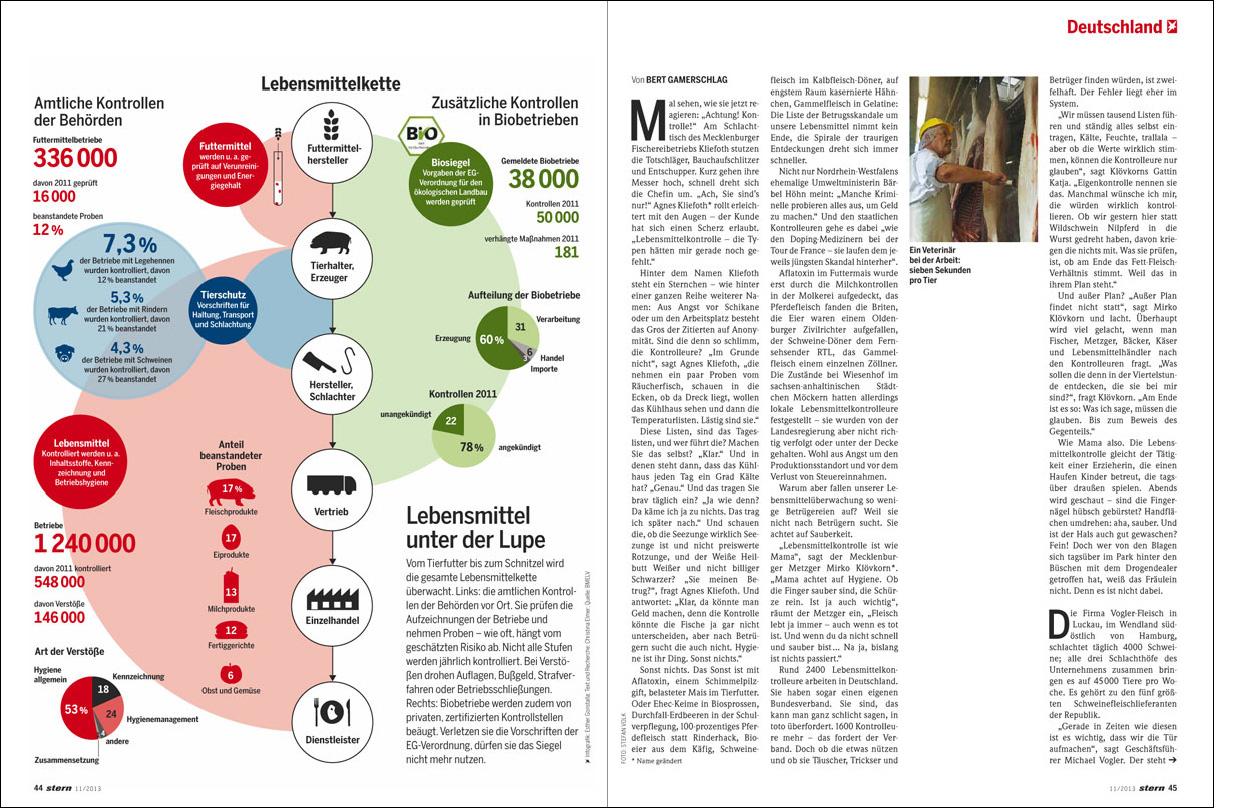 Erdgeschoss Grafik | Esther Gonstalla | Infografik | Stern – Lebensmittel Kontrollen